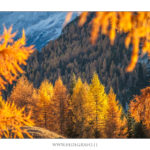 Dolomiti Val fiorentina