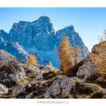 Fotografie Dolomiti - Monte Pelmo